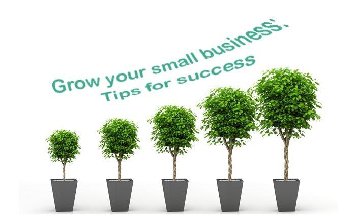 để doanh nghiệp nhỏ thành công