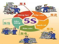 8 Bí quyết giúp bạn thiết lập 5S trong quản lý chất lượng thành công